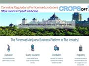 Cannabis Regulations For licensed producers