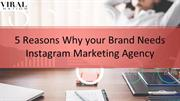 5 Reasons Why your Brand Needs Instagram Marketing Agency