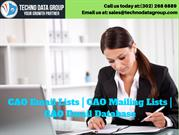 CAO Email Lists _ CAO Mailing Lists _ CAO Email Database in usa