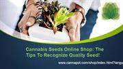 Cannabis Seeds Online Shop: The Tips To Recognize Quality Seed!