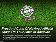 Pros And Cons Of Having Artificial Grass On Your Lawn in Adelaide