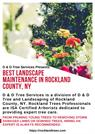 Best Landscape Maintenance in Rockland County, NY
