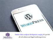 Custom WordPress Development - Matebiz India