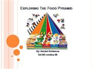 Exploring The Food Pyramid