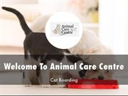 Information Presentation Of Animal Care Centre