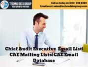 Chief Artificial Intelligence Officers Email List_ CAIO Mailing Lists_