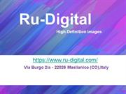 Ru-Digital(Damasks-chic images for your creativity )