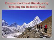 Discover the Great Himalayas by Trekking the Beautiful Peak