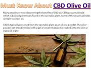 Must Know About CBD Olive Oil