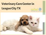 Customer Reviews- One of the best veterinary clinics in League City TX