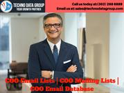 COO Email Lists _ COO Mailing Lists _ COO Email Database in usa (1)