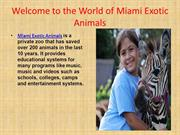 Rent Exotic wild Animals in Florida