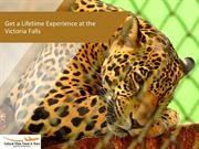 Get a Lifetime Experience at the Victoria Falls
