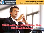 Chief Digital Officer  Email Lists _ CDO Mailing Lists _ CDO Email Dat
