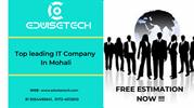 Best Reputed Web Development Company In Mohali