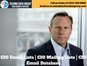 CIO Email Lists _ CIO Mailing Lists _ CIO Email Database in usa