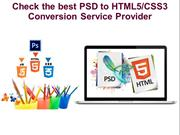 Check the best PSD to HTML5CSS3 Conversion Service Provider (1)