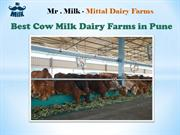 Best Cow Milk Dairy Farms in Pune