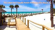 The 3 Best Pet Friendly Hotels in Panama City Beach, FL