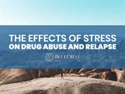 The Effect of Stress on Drug Abuse and Relapse