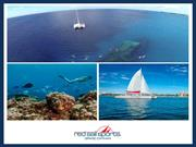 Luxuriate in the Thrilling Watersports on Your Trip to Cayman