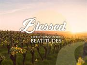 Blessed - Peacemakers