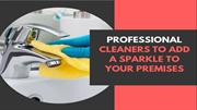 PROFESSIONAL CLEANERS TO ADD A SPARKLE TO YOUR PREMISES