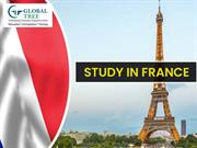 France Education Consultants in India - Global Tree