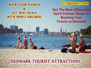 Get the best offers and Spirit Airlines Deals on booking your tickets