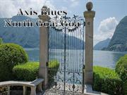 Axis Blues| Call: 8448571360