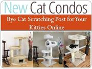 Bye Cat Scratching Post for Your Kitties Online