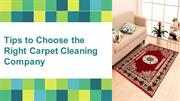 Tips to Choose the Right Carpet Cleaning Company