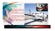 Ideal Lifesaver Air Ambulance from Delhi Available
