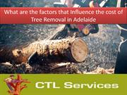What are the factors that Influence the cost of Tree Removal in Adelai