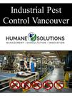 Industrial Pest Control Vancouver