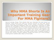 Why MMA Shorts Is An Important Training Gear For MMA Fighters?