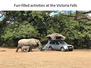 Fun-filled activities at the Victoria Falls