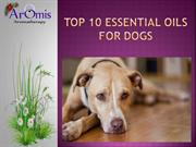 Top 10 Essential Oils for Dogs