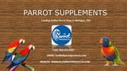 Buy High Quality Parrot Supplements Online – All Parrot Products