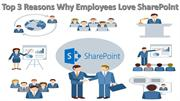 Top 3 Reasons Why Employees Love SharePoint