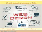 Website Designing Company in Delhi, web design & Development Company