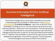 Summer Internship 2019 in Artificial Intelligence