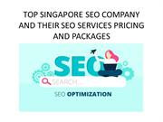 TOP SINGAPORE SEO COMPANY AND THEIR SEO SERVICES PRICING AND PACKAGES