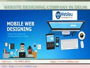 Website Designing Company in Delhi-Noida-Gurgaon | Weblieu Web Designi
