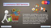 E-commerce SEO Services