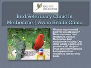 Bird Veterinary Clinic in Melbourne | Avian Health Clinic