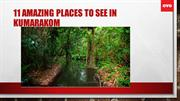11 AMAZING PLACES TO SEE IN KUMARAKOM