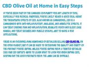 CBD Olive Oil at Home in Easy Steps