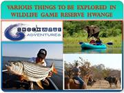 Various  things  to be  explored  in Wildlife  Game  Reserve  Hwange