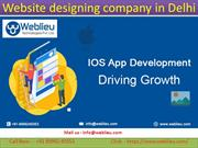 Web Development Company | Website Designing Company in Delhi, India